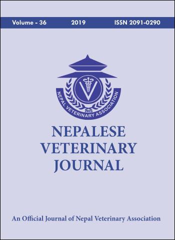 Cover NVJ