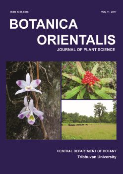 Cover of Botanica Orientalis